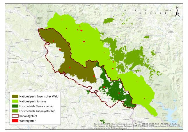 Nationalpark Bayerischer Wald Karte.Neue Wege Zu Einem Grenzüberschreitenden Rotwildmanagement In Zeiten
