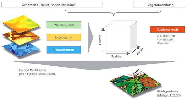 waldtypenkarte eine neue planungsgrundlage f r den alpenraum. Black Bedroom Furniture Sets. Home Design Ideas