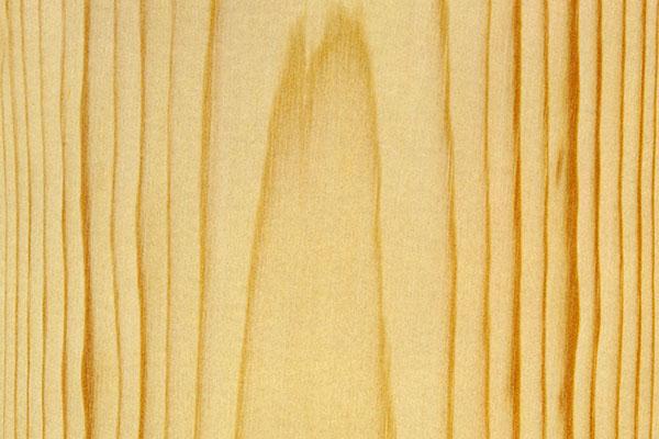 Das Holz Der Fichte